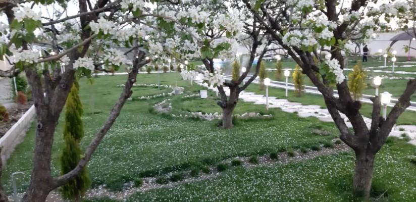 اجاره ویلا باغ بزرگ و زیبا در کرج