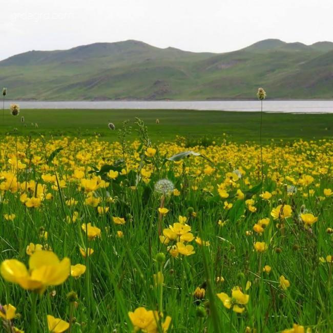 دریاچه نئور استان اردبیل