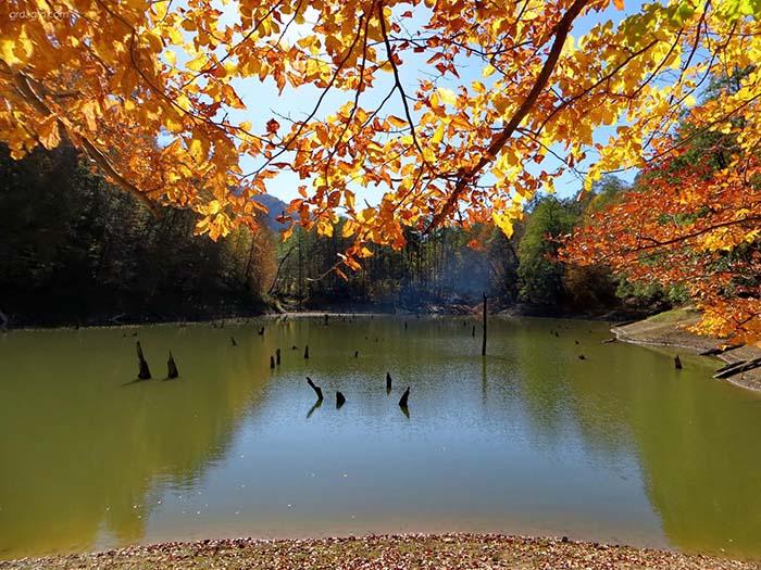 دریاچه چورت؛ دریاچهای رویایی در دل جنگل