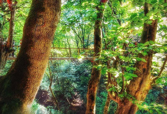 آبشار زیبای ویسادار